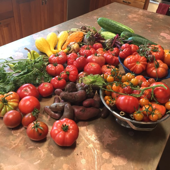 Fall harvest featuring heirloom tomatoes