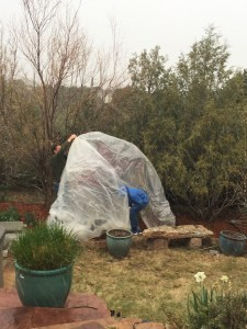 Plastic tent to protect